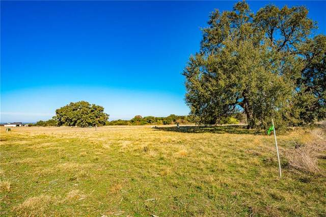 Lot 40 Summit Springs Dr, Marble Falls, TX 78654 (#7581472) :: 12 Points Group