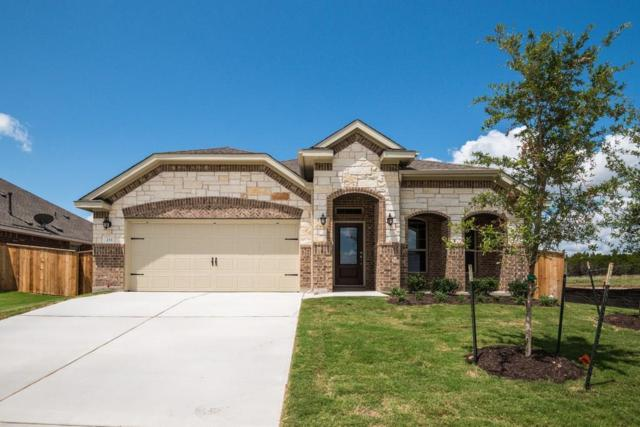 233 Tinto St, Leander, TX 78641 (#8401949) :: Watters International