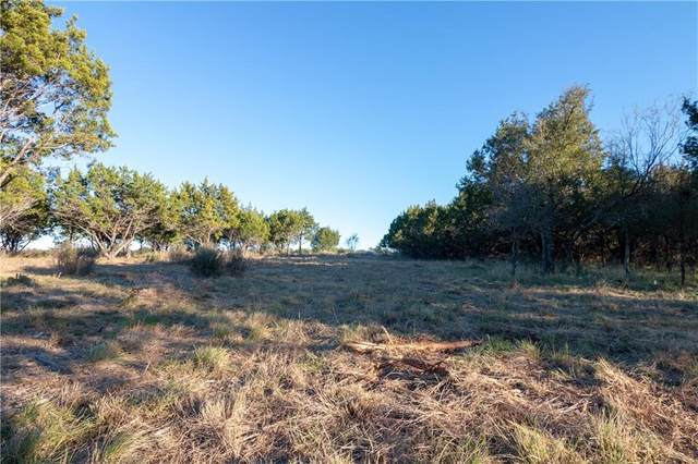 Lot 46 Park View Dr, Marble Falls, TX 78654 (#9297553) :: First Texas Brokerage Company