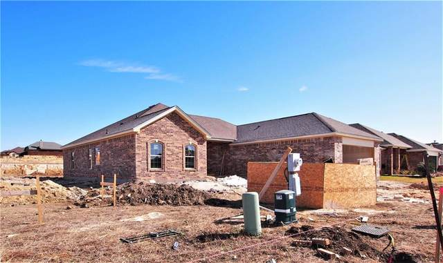 205 Terry Meadow Ln, Jarrell, TX 76537 (#1066706) :: RE/MAX IDEAL REALTY