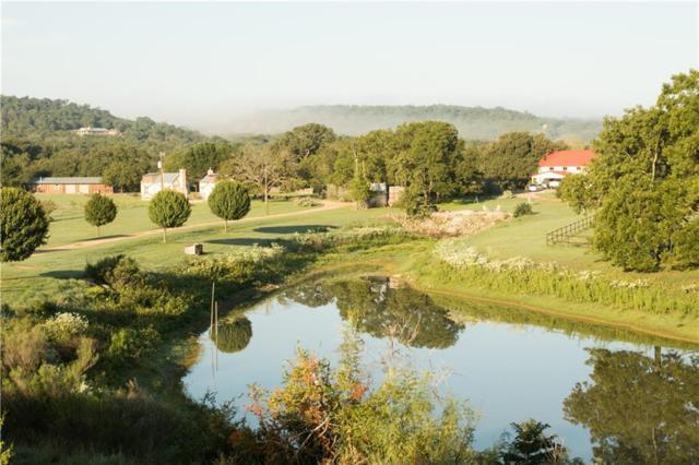 457 Bob Moritz Dr, Fredericksburg, TX 78624 (#4640774) :: Papasan Real Estate Team @ Keller Williams Realty
