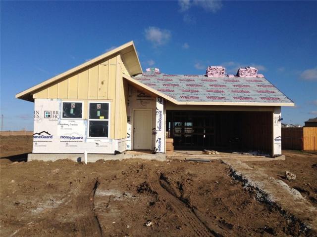 116 Saranac Drive Dr, Elgin, TX 78621 (#6021496) :: Ana Luxury Homes