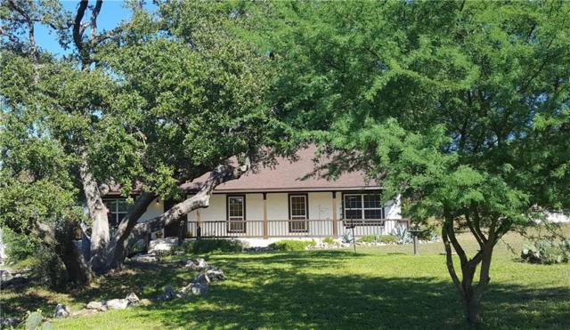 1210 Shady Holw, New Braunfels, TX 78132 (#6158280) :: Ana Luxury Homes