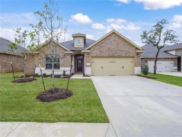 529 Scenic Bluff Dr, Georgetown, TX 78628 (#6858668) :: Magnolia Realty