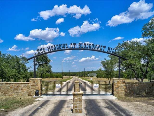 249 Rain Lily Lot 17 Ct, Burnet, TX 78611 (#9133579) :: First Texas Brokerage Company