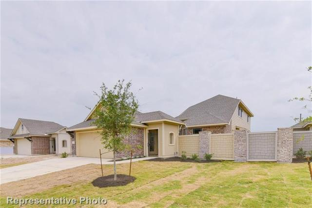2113 Pindos Pony Way, Georgetown, TX 78626 (#9624775) :: The ZinaSells Group