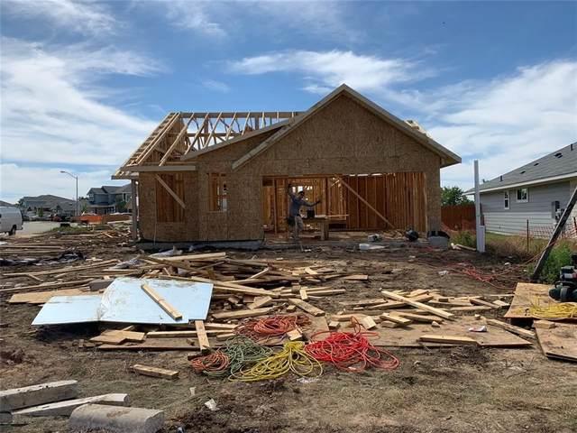 301 Schuylerville Drive, Elgin, TX 78621 (#2340896) :: Papasan Real Estate Team @ Keller Williams Realty