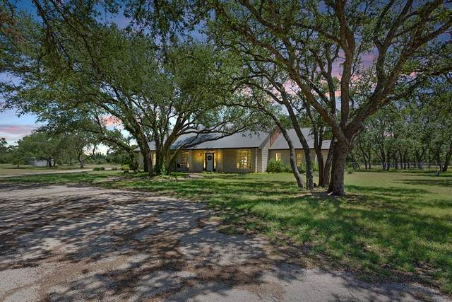 9190 Ranch Road 1869, Liberty Hill, TX 78642 (#4826230) :: Papasan Real Estate Team @ Keller Williams Realty