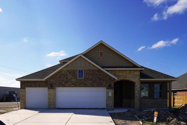3544 De Soto Loop, Round Rock, TX 78665 (#8822187) :: Papasan Real Estate Team @ Keller Williams Realty