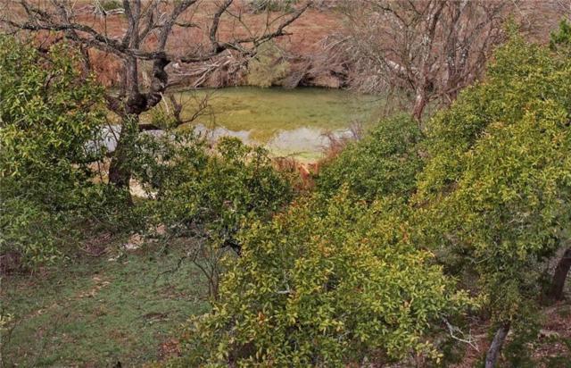 510 River Rapids Rd, Wimberley, TX 78676 (#7486174) :: Watters International