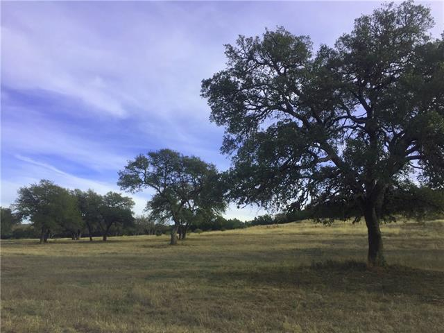 Lt000 Thriving Oak Dr, Stonewall, TX 78671 (#1001219) :: Forte Properties