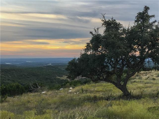 Lot 139 Cherokee Ridge, Bertram, TX 78605 (#1010802) :: Papasan Real Estate Team @ Keller Williams Realty