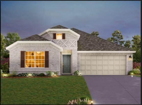 11916 Mexia Pass, Manor, TX 78653 (#1062283) :: Zina & Co. Real Estate