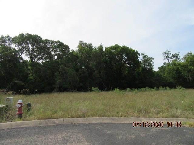 119 Settlement Dr, Fredericksburg, TX 78624 (#1094673) :: First Texas Brokerage Company