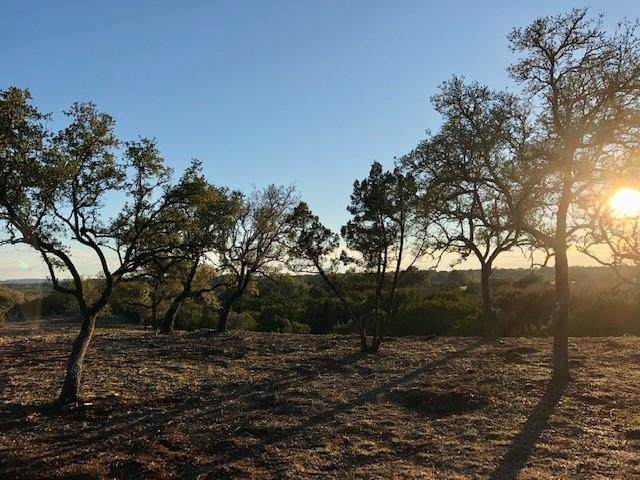 475 Happy Trails, Dripping Springs, TX 78620 (#1111051) :: 12 Points Group