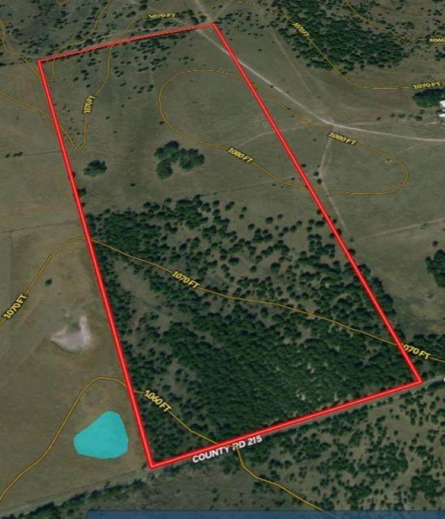 000 County Rd 215, Florence, TX 76527 (#1129346) :: Papasan Real Estate Team @ Keller Williams Realty