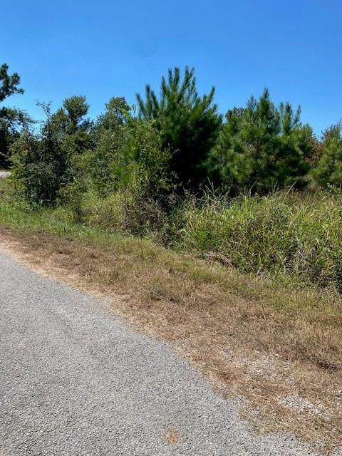 Lot 3 Village Forest Dr W, Smithville, TX 78957 (#1132500) :: Watters International