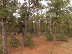 TBD E Briar Forest Dr, Bastrop, TX 78602 (#1200117) :: The Smith Team