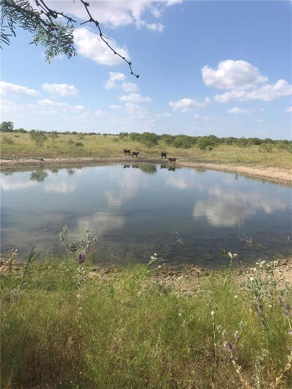 300 Gatlin Ranch Rd - Photo 1