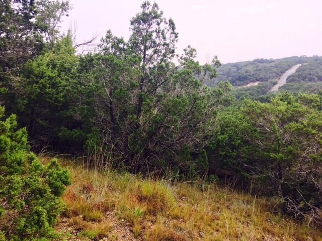 9011 El Cajon Ln, Lago Vista, TX 78645 (#1309881) :: Zina & Co. Real Estate