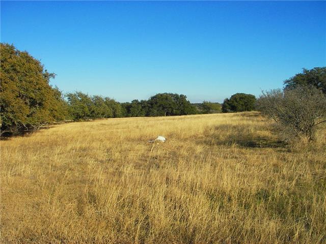 8 Vista Ridge Dr, Round Mountain, TX 78663 (#1415131) :: NewHomePrograms.com LLC