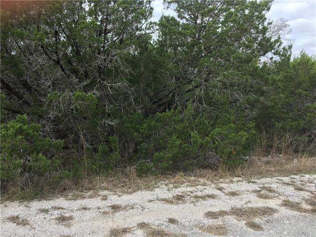 3402 Congress Ave, Lago Vista, TX 78645 (#1604757) :: Forte Properties