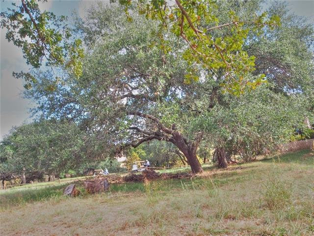 313 Blue Ground, Horseshoe Bay, TX 78657 (#1609845) :: Forte Properties