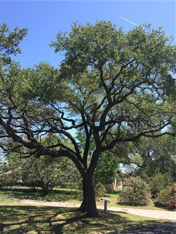 0 Spanish Oak Dr, Round Rock, TX 78681 (#1618479) :: RE/MAX Capital City