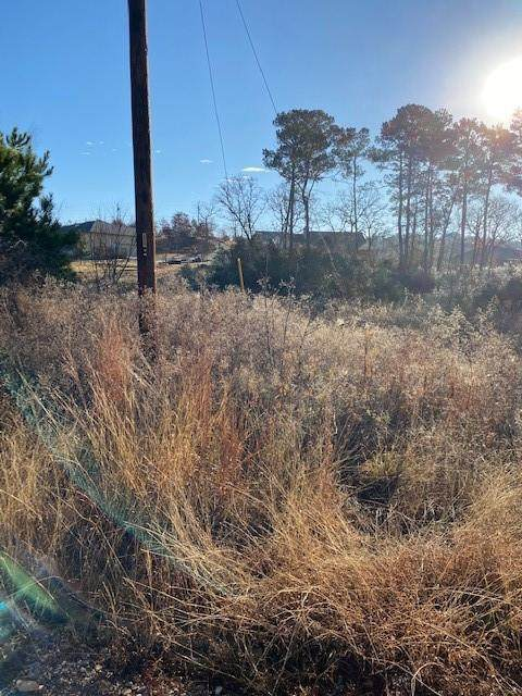 Lot 793 Koali Dr, Bastrop, TX 78602 (#1639015) :: First Texas Brokerage Company
