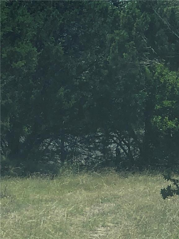 41 Serenade Cir, Wimberley, TX 78676 (#1639956) :: The ZinaSells Group