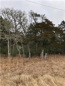 0000 Slo John Rd, Flatonia, TX 78941 (#1703618) :: Zina & Co. Real Estate
