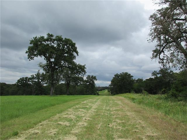 0 Owensville Cemetery Rd, Other, TX 77856 (#1704107) :: Papasan Real Estate Team @ Keller Williams Realty