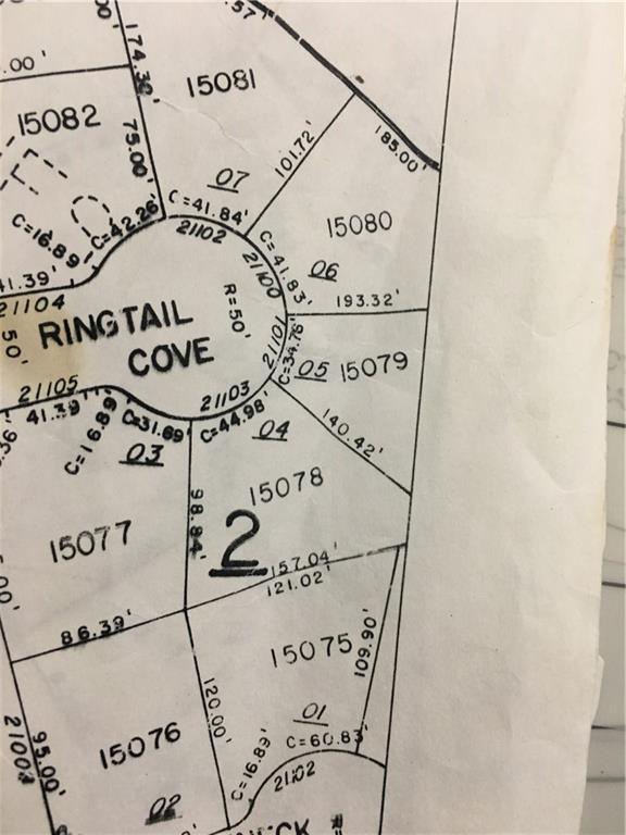 21103 Ringtail Cv, Lago Vista, TX 78645 (#1710527) :: Realty Executives - Town & Country