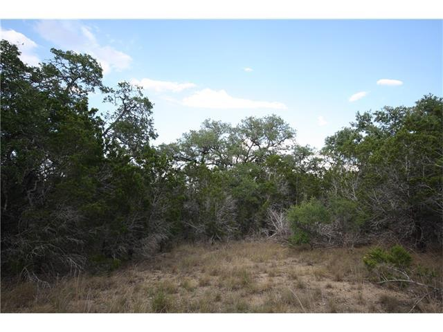 76 Cheyenne Trl, Wimberley, TX 78676 (#1748172) :: Forte Properties