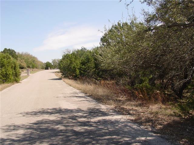 17912 Turkey Trot Trl, Dripping Springs, TX 78620 (#1768787) :: Forte Properties