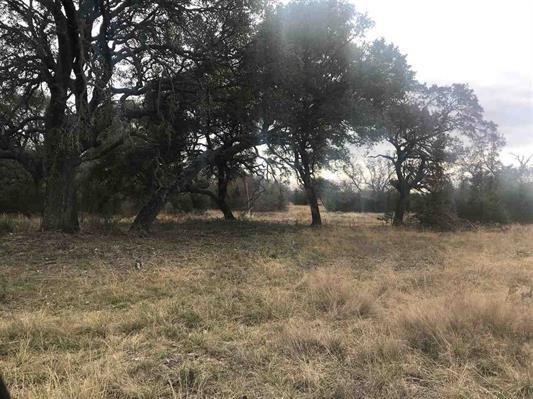 345 Sable Pass, Lampasas, TX 76550 (#1822997) :: Papasan Real Estate Team @ Keller Williams Realty