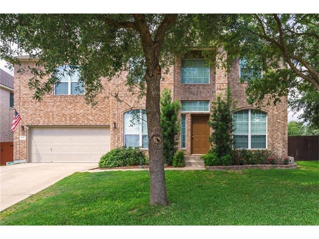 900 Linden Loop, Cedar Park, TX 78613 (#1848360) :: Forte Properties