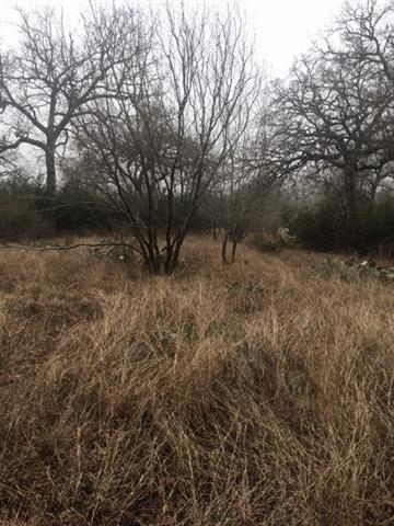 Lot 2 W Trail Dr, Spicewood, TX 78669 (#1912419) :: The Gregory Group