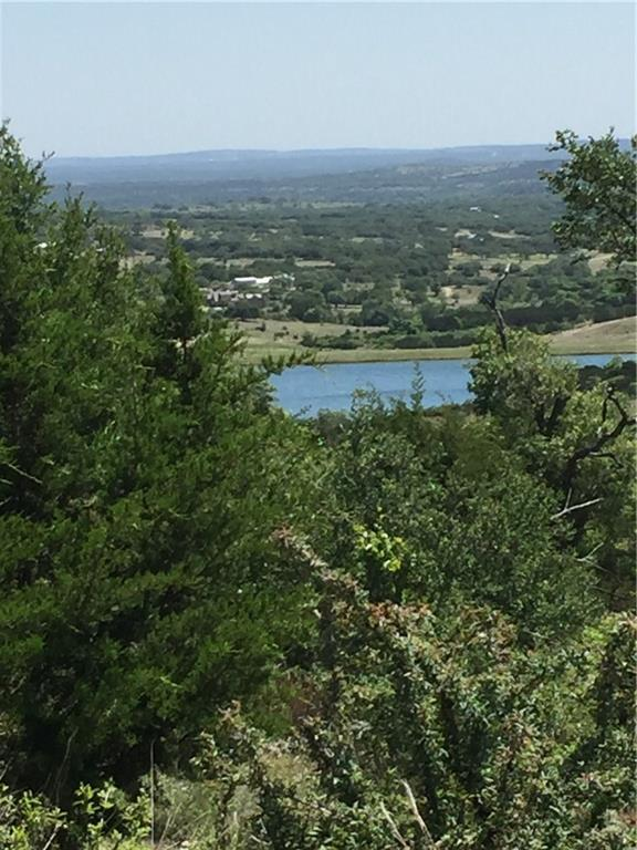 0 Elk Run Cove, Blanco, TX 78606 (#1924268) :: The Perry Henderson Group at Berkshire Hathaway Texas Realty