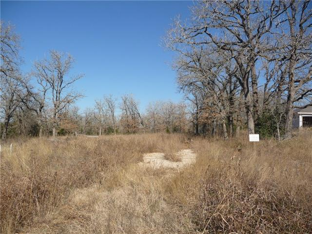 152 Arbor Hill Way, Cedar Creek, TX 78612 (#2065625) :: The Heyl Group at Keller Williams
