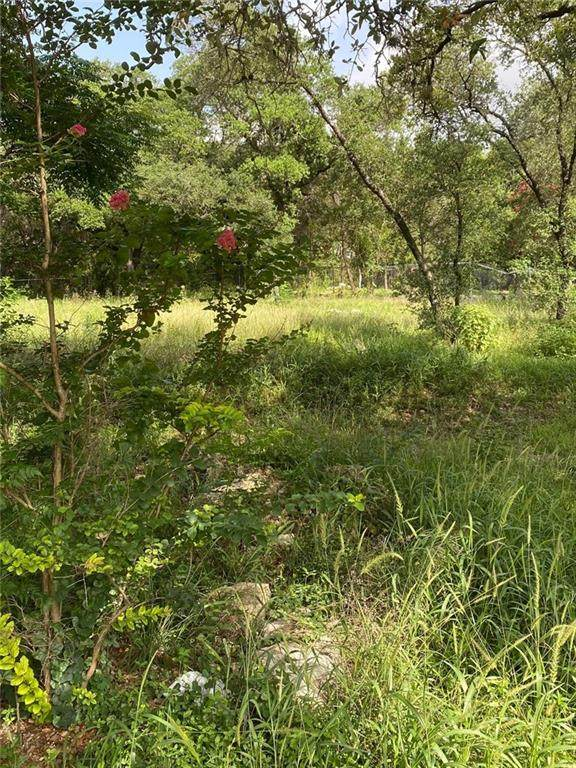 18110 Park Dr, Jonestown, TX 78645 (#2086328) :: Papasan Real Estate Team @ Keller Williams Realty