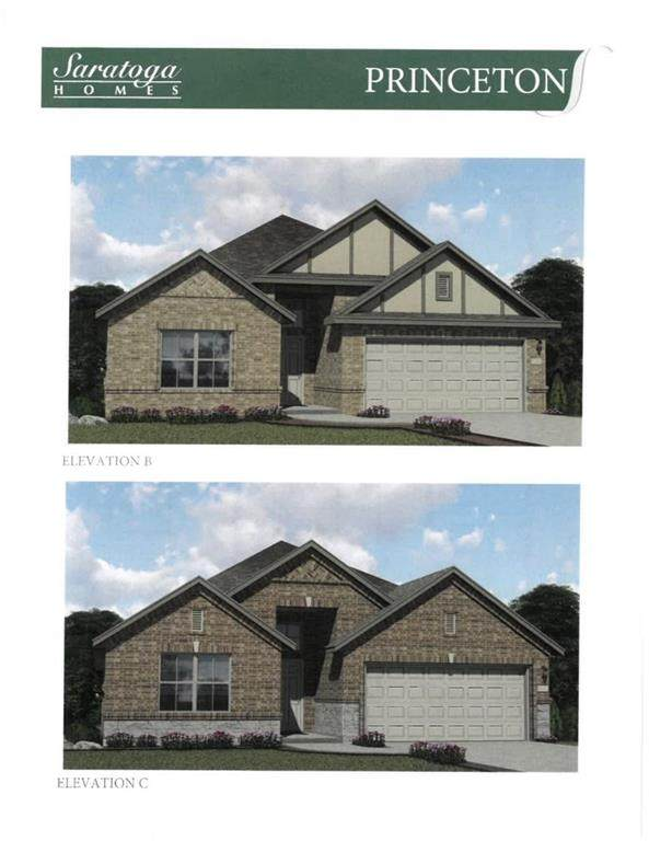 20421 Whimbrel Ct, Pflugerville, TX 78660 (#2098622) :: The Gregory Group
