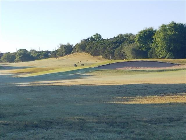 21103 Greenpark Dr, Lago Vista, TX 78645 (#2116446) :: Forte Properties