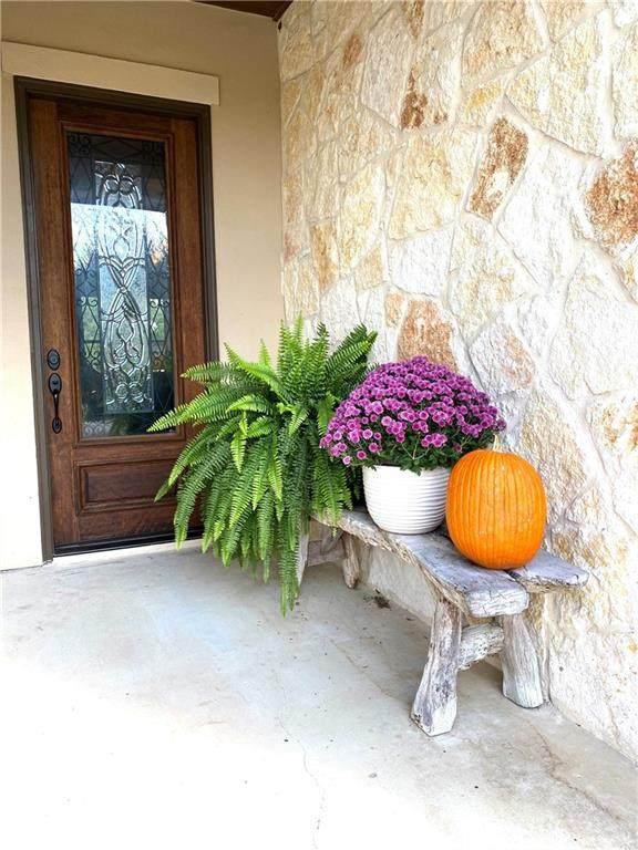 253 Blackbird Dr, Spring Branch, TX 78070 (#2146049) :: Papasan Real Estate Team @ Keller Williams Realty