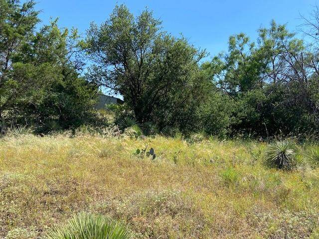 TBD Sweetbriar, Granite Shoals, TX 78654 (#2187750) :: The Perry Henderson Group at Berkshire Hathaway Texas Realty