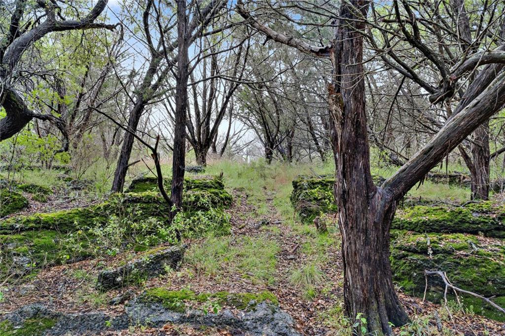 Lot 50 Park View Dr - Photo 1