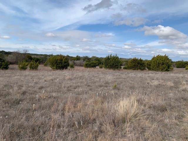 48 Cloudwood Ranch Rd, Briggs, TX 78608 (#2284401) :: The Perry Henderson Group at Berkshire Hathaway Texas Realty