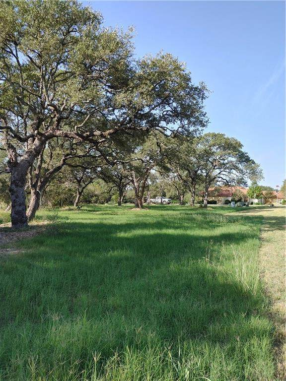 117 Covered Bridge Dr, Driftwood, TX 78619 (#2306503) :: RE/MAX Capital City