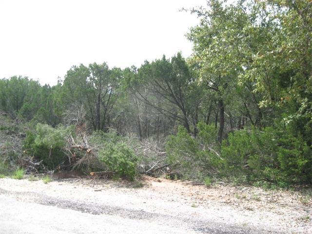 20830 El Dorado St, Lago Vista, TX 78645 (#2346554) :: Forte Properties