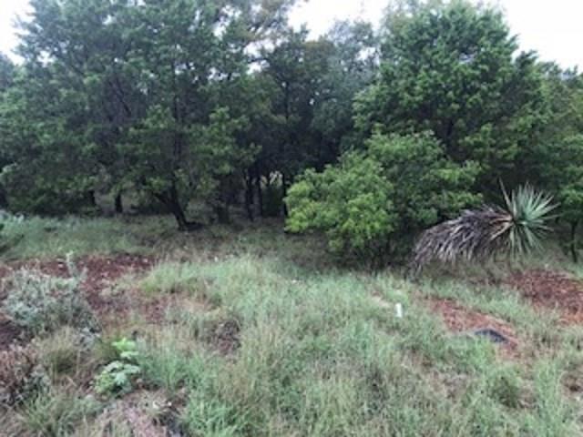 28689 Long Shot, Horseshoe Bay, TX 78657 (#2400231) :: 3 Creeks Real Estate